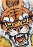 ACEO - Tigerish Hellcat by synnabar