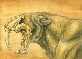 Smilodon Populator by synnabar