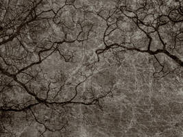 Antique Texture 14 by Inthename-Stock