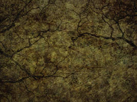 Antique Texture 38 by Inthename-Stock