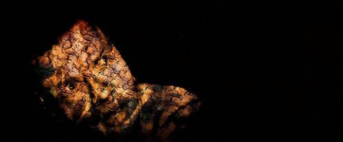 Darkened Shadows by Emancipator