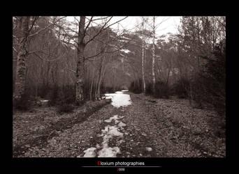 Snowy way by DyrArt