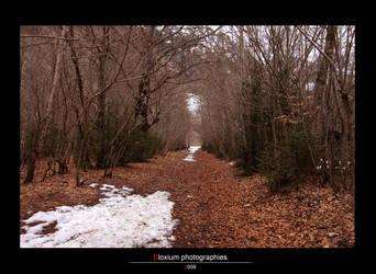 Snowy way 2 by DyrArt