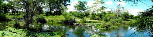 Paradise by Solvegia