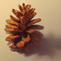Pinecone by skylarcassandrarose