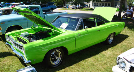 Green Roadrunner by DullCry