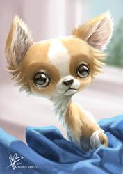 Puppy by mawelman