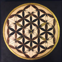Flower of Life by SuMeiMei