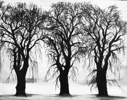 Tree Silhouettes by SuMeiMei