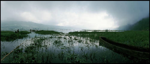 Swamp by AntiSpy