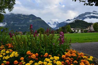 Interlaken Ost by dandelion-field