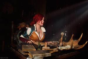 The Witcher 3: Wild Hunt by fenixfatalist