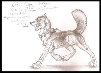 wilki trzymaja sie w stadzie by Mazakdupa