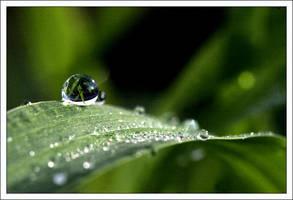 One drop behind... by aural