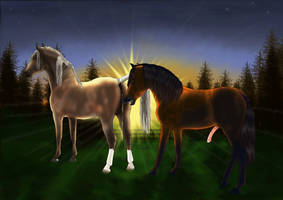 Sunrise Tempis: an Illustration of Horse Mating by JNFerrigno