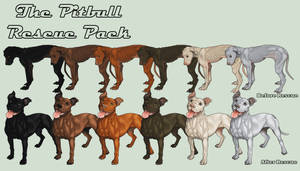 TheHOUNDS: Pit Bull Pack by JNFerrigno