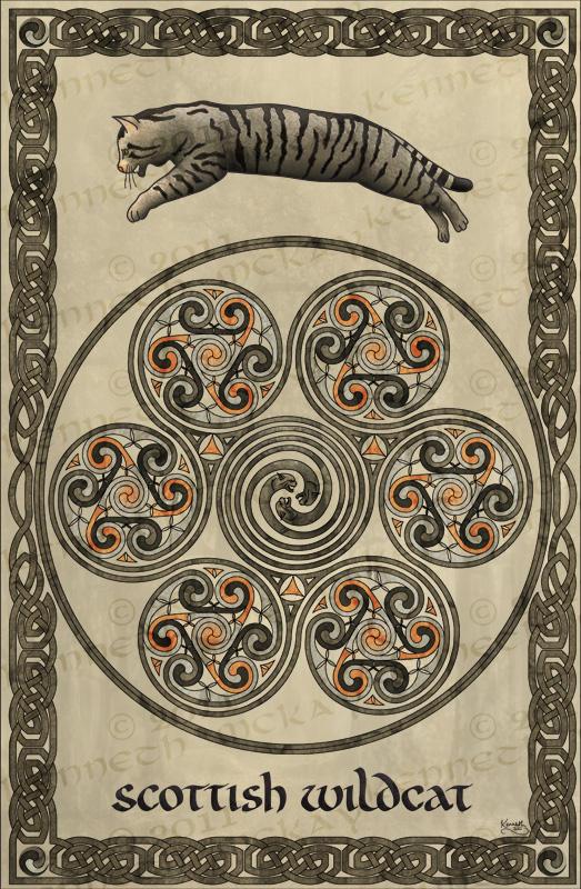 Scottish Wildcat By Altarathedark-d3gk1nj by moravid