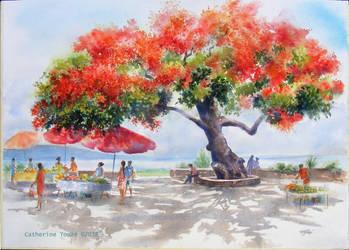 Le marche au flamboyant by Papercolour