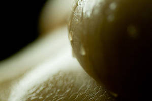 wet breast by AlexWilson