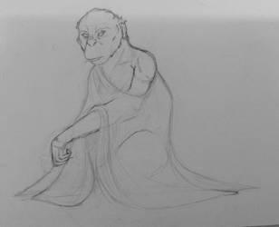 A Lady by FedhaGrulo