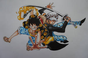 Luffy and Law by nekotas