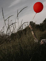 red balloon by seafoodmwg