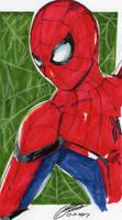 Spider Man by CristianGarro