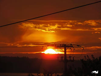 Telephone And Electric Wires Sunset by wolfwings1