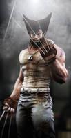Wolverine2 by samar999