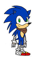 Sonic the Hedgehog (Sonic Boom) by LeaderInBlue84