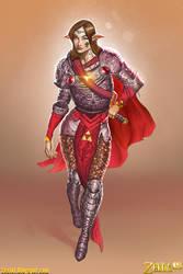 Zelda Character Concept by Zesiul