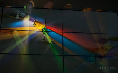 Lighting As Art by lupiniastudios