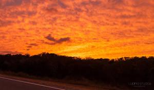 Orange Sky Over Ponies by lupiniastudios