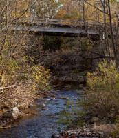 Dead Creek by lupiniastudios