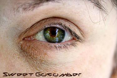 HDR Eye by LeLoupBrun