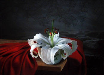 Lilie by BritaSeifert