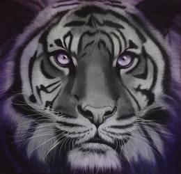 Tiger by BritaSeifert