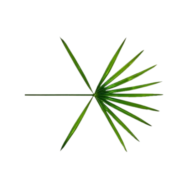 [SHARE PNG] EXO The War 'Ko Ko Bop'  Logo PNG @1