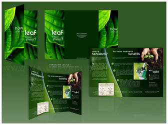 Leaflet - Herbalism by ma-lafvain