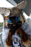 Felyne sweet Cat by polkajolka