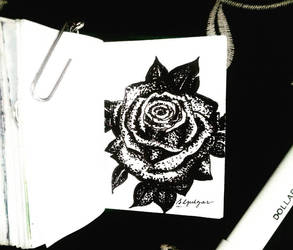 Ink rose by amiablez