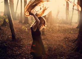 Catching Light by TamaraWill