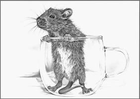 Rat-in-a-cup by Adniv