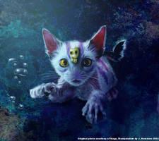 Underwater kitty by noo