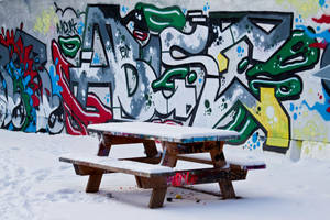 Snowy graffiti by Bozack