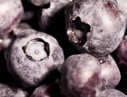 Blue berry series VI by Bozack