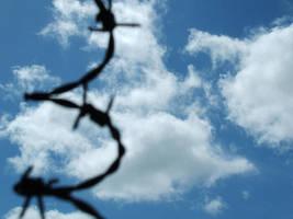 Freedom by Bozack