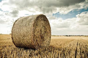 From the fields of Sweden by JBridges