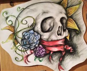 Delicate Skull by Cherry-RagDoll