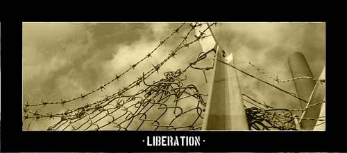 Liberation by lafa